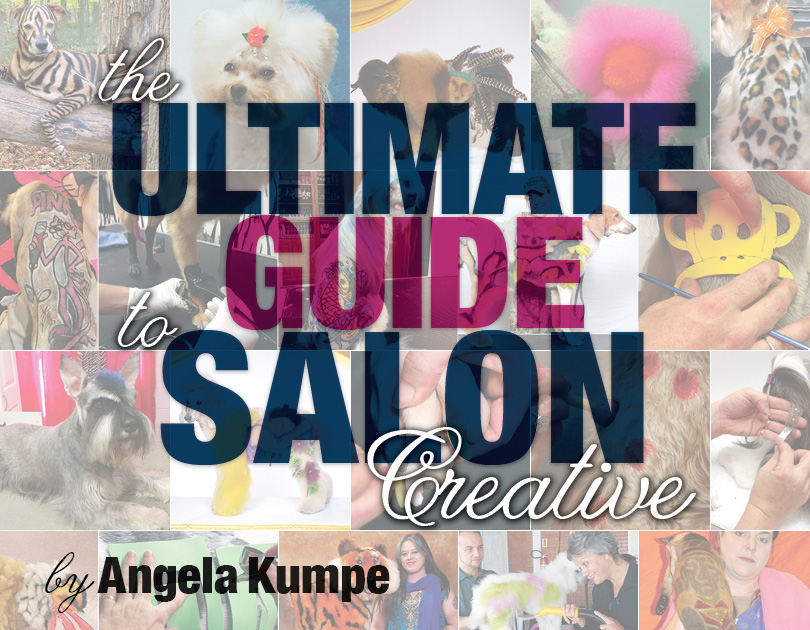 The Ultimate Guide to Salon Creative